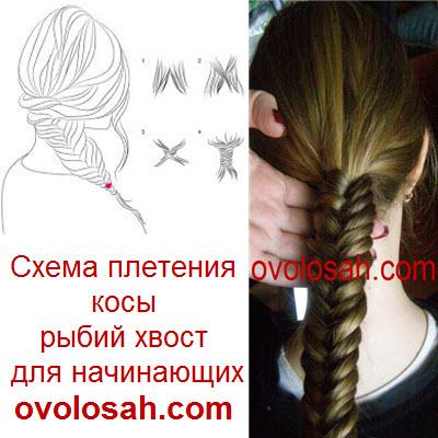 Схема косы рыбий хвост, как плести